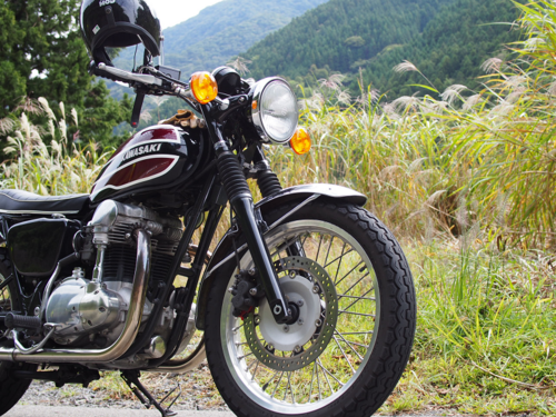 W650.png